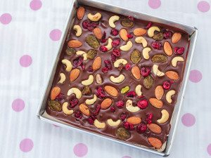 Chocolate Bark with Cranberries and Nuts