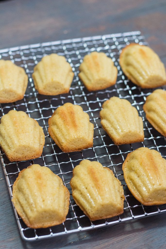 Classic Madeleine Recipe - Maya Kitchenette