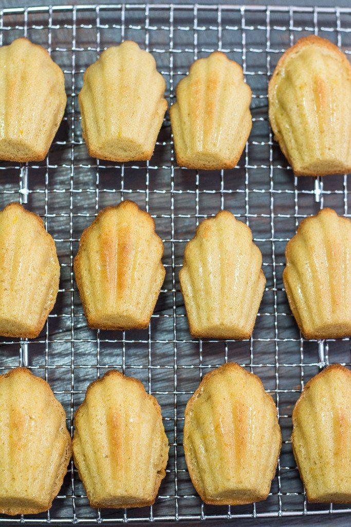 Classic Madeleine Recipe - Maya Kitchenette